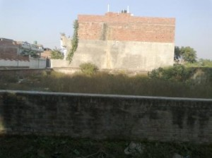 4130-sq-fit-LDA-plot-PURANIYA-TIRAHA-in-aliga-356134317-1398079673