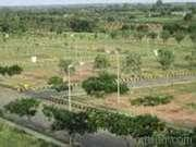For-sale-my-southcity-plot-344318027-1397823568