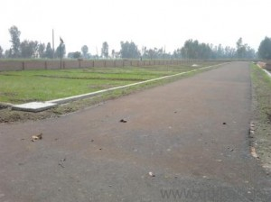 plot-for-sale-in-kanpur-road-1545975182-1397451136