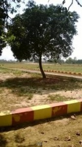 Free-hold-plots-are-available-near-Amity-new-Campus-540752409-1399365598
