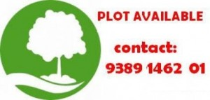 Plot-Available-at-Triveni-Nagar-1334028700-1399187059