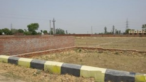 Plot-for-Sale-in-Gomti-Nagar-Extension-Lucknow-297213330-1397702483