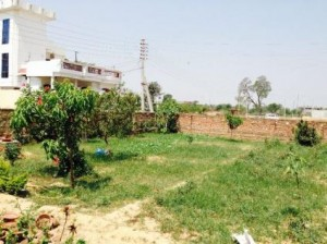 Plot-for-sale-on-iim-road-348284046-1401258621 (1)