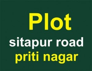 Plot-in-pritinagar-sitapur-road-1409202563-1400565046