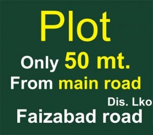 Plot-only-50-mt-from-main-road-Faizabad-road-1464250174-1398854387
