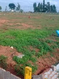 Residential-land-for-Sale-in-Kamta-Faizabad-road--967642615-1399385556