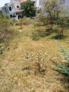 Residential-plot-for-sale-in-Lucknow-435580511-1401008434