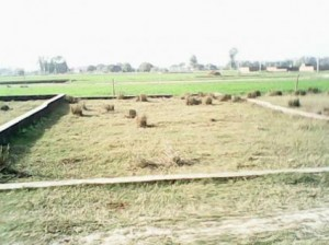 Residential-plot-for-sale-in-lko-near-dubagga-sahara-city-sitapur-highway-1331896670-1391696384