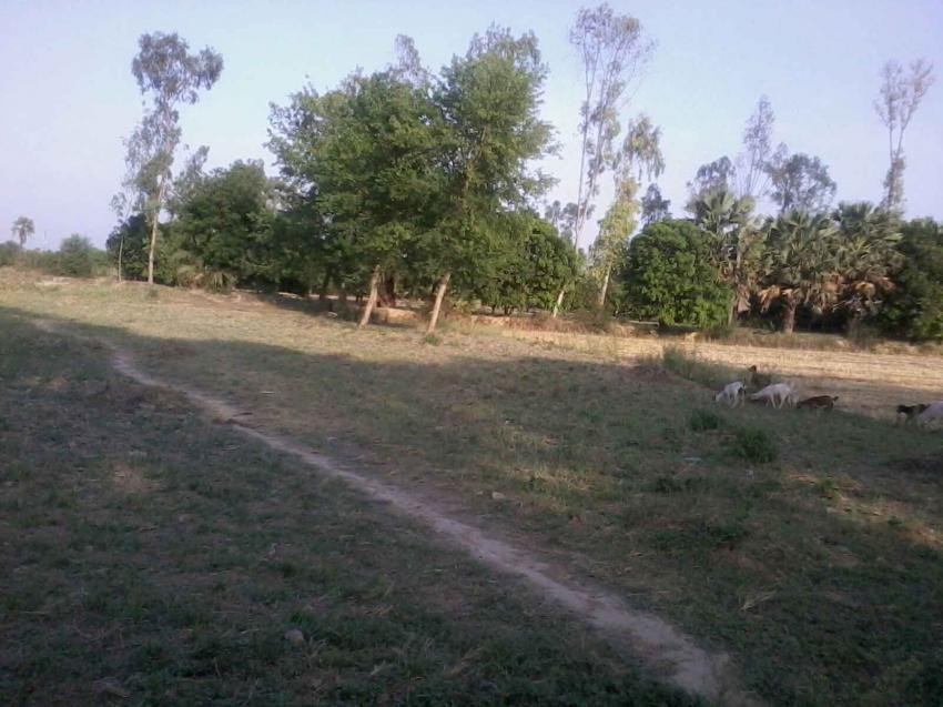 Arjunganj Hitech Plot 1200rs Sqft Very Good Land For Sale