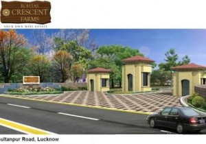 150-SQYD-ACRE-SCHEME-PLOTS-WITH-ASSURED-RETURN-101690568-1401965504