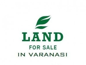 19090-Sqrft-Land-on-road-For-sell-in-Shivpur-Varanasi-483306356-1401859282
