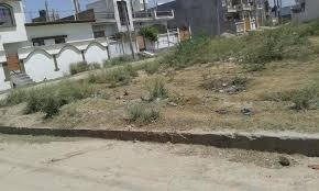 2400sqft-residential-plot-east-facing-corner-for-sale-in-aashiana-1008298256-1402031725
