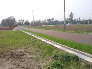 Plot-for-Sale-in-Kanpur-Road-Lucknow-1770536726-1395725696